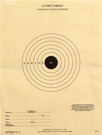 15 Foot Junior Air Rifle Single Bullseye
