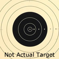 Center for 100 Yard Reduction 300 Yard Military Target